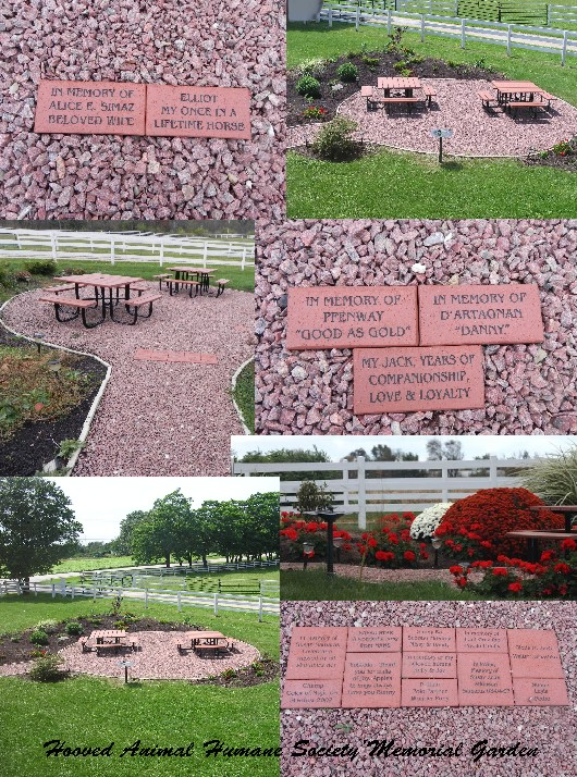 Engraved Bricks, Pavers, Memorial, Fundraising Brick - Polar Engraving