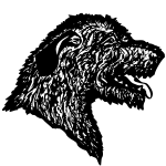 Z1162 IRWolf