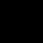 Z1051 Black Russian Terrier