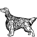 Z1121 ENGSET