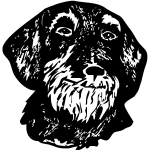 Z1100 DACH4