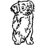 Z1261 Tinspan3