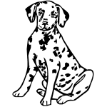 Z1104 Dalmatian Pup